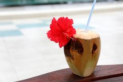 Fresh coconut cocktail. At resort Stock Photo