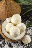 Fresh coconut and coconut cookies on dark background Royalty Free Stock Image