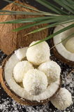 Fresh coconut and coconut cookies on dark background Stock Photos
