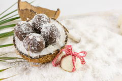 Fresh coconut and coconut cookies Royalty Free Stock Photo
