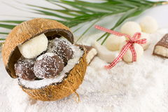 Fresh coconut and coconut cookies Stock Photography