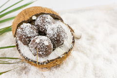 Fresh coconut and coconut cookies Stock Image