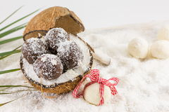 Fresh coconut and coconut cookies Stock Photos