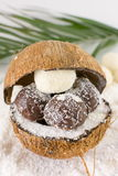 Fresh coconut and coconut cookies Royalty Free Stock Photos