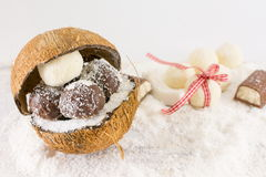 Fresh coconut and coconut cookies Stock Photo