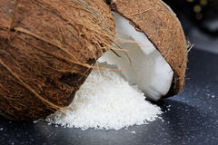 Fresh coconut and coconut desiccated Royalty Free Stock Image