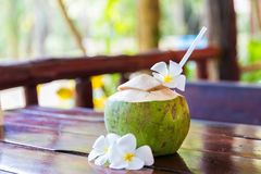 Fresh coconut cuts with tropical palm leaves and white frangipani flowers. With straw stock images