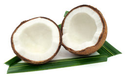 Fresh Coconut with green leaves Royalty Free Stock Photo