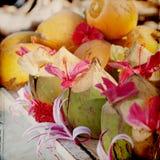 Fresh Coconut Grunge Background royalty free stock photos