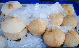 Fresh coconut on ice in the market Stock Photo