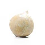 Fresh Coconut isolate on white background (Fruit) Stock Photo