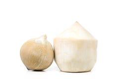 Fresh Coconut isolate on white background (Fruit) Stock Image