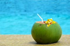 Fresh coconut juice with a drinking straw Royalty Free Stock Photo