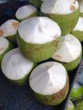 Fresh coconut Royalty Free Stock Photography