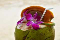Fresh coconut milk juice decorated with flowers Stock Photography