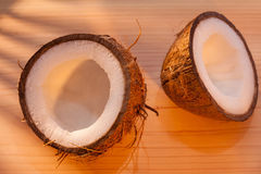Fresh coconut in morning sunlight Royalty Free Stock Photography