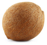 Fresh Coconut Royalty Free Stock Image