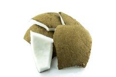 Fresh Coconut parts Royalty Free Stock Photo