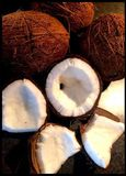 Fresh coconut cut in halves royalty free stock images