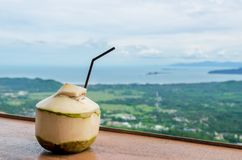Fresh Coconut Water Drink. In cafe with seaview Stock Photography