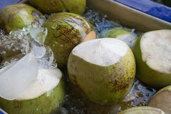 Fresh coconut in water and ice Royalty Free Stock Images