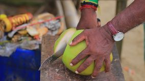 Fresh coconut water stock video footage