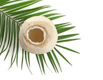 Fresh coconut water in nut. On white background Stock Photo