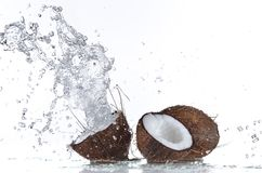 Fresh coconut with water splash Royalty Free Stock Photo