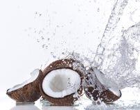 Fresh coconut with water splash Stock Photo