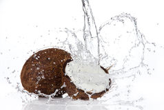 Fresh coconuts Royalty Free Stock Photography