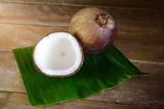 Fresh coconuts on banana leaf Royalty Free Stock Image