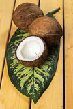 Fresh coconuts. Close up of fresh coconuts Stock Photos