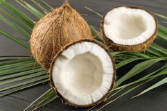 Fresh coconuts and coconut leaves Stock Image