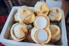 Fresh coconuts in Ice buckets food raw. White Royalty Free Stock Photos