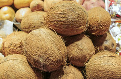 Fresh coconuts in a market of Barcelona Stock Image