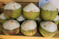 Fresh coconuts in the market, Thailand Royalty Free Stock Photography