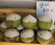 Fresh coconuts in the market, Thailand Royalty Free Stock Images