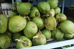 Fresh coconuts in the market. Tropical fruit fresh coconut Royalty Free Stock Photos