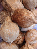 Fresh Coconuts for sale at market Royalty Free Stock Photos