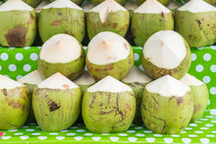 Fresh coconuts on shelf. For sell Stock Photo