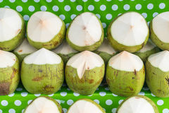 Fresh coconuts on shelf. For sell Stock Photos