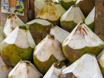 Fresh coconuts on the street market Royalty Free Stock Photography