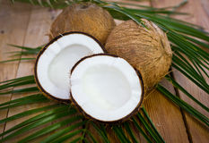 Fresh coconuts on the table. Close up Royalty Free Stock Photos