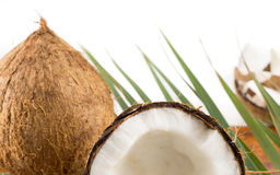 Fresh coconuts in varios forms Royalty Free Stock Photo