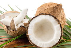 Fresh coconuts in varios forms Royalty Free Stock Photos
