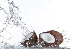 Fresh coconuts with water splash Stock Photos