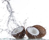 Fresh coconuts with water splash Stock Images
