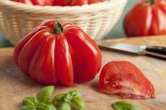 Fresh Coeur de Boeuf Tomato Imagen de archivo libre de regalías
