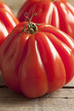 Fresh Coeur de Boeuf Tomatoes Stock Photography