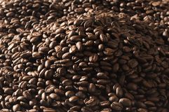 Fresh coffee beans Royalty Free Stock Photography